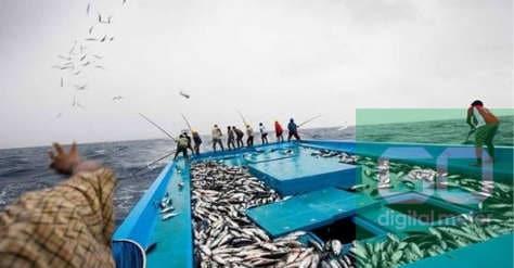 Photo of Pengaruh Cuaca Terhadap Tangkapan Ikan